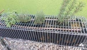 gabbioni giardinaggio